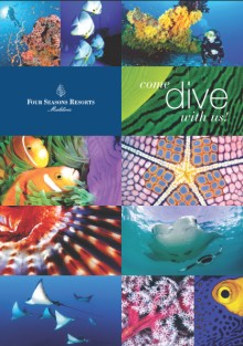 4 Seasons Dive Brochure